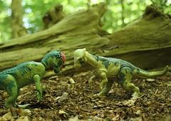 Pachycephalosaurus (rodstoybox) Tags: pachycephalosaurus jurassicpark jurassicworld fallenkingdom lostworld thelostworld dinosaurs toys kenner mattel