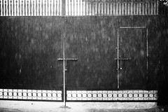 Monsoon Monologues (N A Y E E M) Tags: rain monsoon afternoon gate home rabiarahmanlane chittagong bangladesh atmosphere mood availablelight weather season