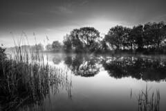 daybreak... (Vladimir Barvinek) Tags: morning daybreak sunrise mist river water canal reflection light rays trees devon exe serene calm scenery