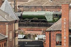 _DSC5188 (BobPetUK) Tags: leeds 2018 flyingscotsman steam locomotive lner 60103 railway callswharf