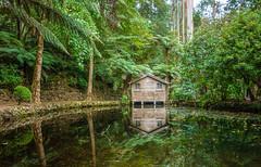 Boat Shed (Scottmh) Tags: 2028 alfred anzac australia autumn d7100 dandenong day garden melbourne nicholas nikon ranges victoria