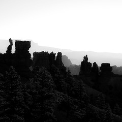 In Canyons 228 (noahbw) Tags: brycecanyon d5000 nikon utah abstract autumn blackwhite blackandwhite bw canyon desert erosion fog foggy hills hoodoos horizon landscape mist misty monochrome mountains natural noahbw quiet rock silhouette sky square still stillness stone