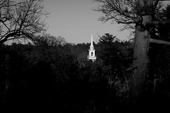 Steeple (El Alcalde de l'Antartida) Tags: woods vegetation nature tower steeple belltower belfry church chapel newengland massachusetts chiesa campanile bosco foresta alberi bush country torre bushes lush architecture