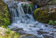 Small Waterfall in spring park (AudioClassic) Tags: waterfall spring park water river pond moss stone rock stream nature estonia season sunlight
