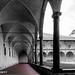Cloisters, Santa Croce, Florence