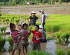 LAO-2 (cgoering) Tags: rice paddy field agriculture food pdc un spider tan lao pdr children smiling twilight sunny kids happy water culture laos kid youth young child joy happiness smile smiles joyful fun