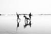 Joys of childhood (asheshr) Tags: bnw beach beachphotography blackwhite blackandwhite d7200 hikey highkey kids kidsplaying mono monochrome nikkon nikkond7200 nikkor nikkor18140mm silhouette