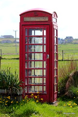 Waiting for your call? Ring,ring. (mootzie) Tags: red phonebox telephone kiosk calls grass green ness lewis scotland glass rustypull phonecall retro ringring yellowdandelions flowers vintage outerhebridesscotland