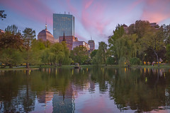 B1007626 (sswee38823) Tags: city cityscape lagoon water pond reflection reflections sky skyline sunset building buildings buildingcomplex skyscrapers boston bostonma bostonpublicgardens bostonpublicgarden color spring handheld evening ma massachusetts leica leicam leicacamera m10 leicam10 leicacameraagleicam10 summaron leicasummaronm15628 summaronm15628 rangefinder photography photograph photo 28mm seansweeney seansweeneyphotographer