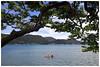 Rowing kayak (Alice 2018) Tags: boat kayak sea water people clouds huawei leica mhal29 mobile huaweimate9 mate9 hongkong 2018 summer blue sky tree plant asia autofocus aatvl01
