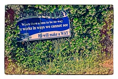 GOD WILL MAKE A WAY (akahawkeyefan) Tags: sign vines fence crazy stupid davemeyer