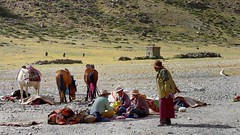 Porters and pack animals for the Kailash Kora, Tibet 2017 (reurinkjan) Tags: tibetབོད བོད་ལྗོངས། 2017 ༢༠༡༧་ ©janreurink tibetanplateauབོད་མཐོ་སྒང་bötogang tibetautonomousregion tar purangསྤུ་ཧྲེང་།county kailashkora portersandpackanimals rideahorseཆིབས་པ་འཆིབchippanchip horseblanketརྟ་ཁེབསtakhep horsesandpackanimalsརྟ་ཁལtakhel horsebreedགནམ་རྟ་གྱི་ལིང༌namtagyiling famousbreedofhorsefromamdoandmongoliaགནམ་རྟའི་ལིང༌namteling portrait portraiture facecolorགདོང་མདོགdongdok portrayal picture photograph tibetannationalitytibetansབོད་རིགས།bodrigs tibetannationtibetanpeopleབོད་ཀྱི་མི་བརྒྱུདbökyimigyü