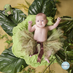 IMG_0212 (SpringTrippReilly-Life's Elements Photography) Tags: baby 3 months ©springreilly lifes elements photography portraits lily pad leaves