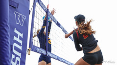 PAC-12 North Invitational 2018-FT4I2682 (Pacific Northwest Volleyball Photography) Tags: beachvolleyball ncaa pac12 pac12bvb alkibeach seattle