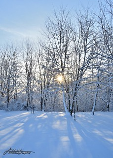 Spring Snowfall_05_DSC_1445_WM