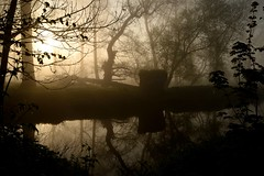 At the bend in the Mole (smcnally24601) Tags: mist river mole surrey britain british england english morning spring betchworth