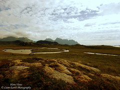 Horn View (liamearth) Tags: earth shore sky mountain sceneic wilderness beautiful sea view outdoor water western landscape wild lofoten norway arctic circle traveling real life camping serene mountainside still clear texture contrast bay colour vestvågøya rock grass green field lake river tree garden stamsund rocks animal clouds coast wetlands