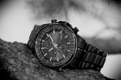 Citizen, Eco-Drive. 4 (EOS) (Mega-Magpie) Tags: canon eos 60d outdoors time timepiece watch wristwatch citizen ecodrive world chronograph wr200 radio control atomic clock tree branch japan quartz