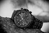 Citizen, Eco-Drive. 4 (EOS) (Mega-Magpie) Tags: canon eos 60d outdoors time timepiece watch wristwatch citizen ecodrive world chronograph wr200 radio control atomic clock tree branch japan quartz