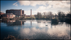 Darley Abbey mills (G. Postlethwaite esq.) Tags: canon40d darleyabbey darleysrestaurant sigma1020 buildings chimney clouds ducks mills photoborder riverderwent sky treess weir wideangle