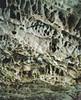 Red River Gorge (nikolaijan) Tags: plaubel plaubelmakina 67 fuji nph400 redrivergorge ky usa