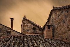 DSC_02559F (Javier_1972) Tags: tejado pueblo castrillo polvazares astorga castilla castillayleon españa leon cielo arquitectura edificio chimeneas piedra tejas saturacion