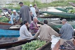 Comparing notes (Nagarjun) Tags: floatingvegetablemarket flowers dallake kashmir srinagar commerce trade veggies kohlrabi dawn morning sunrise green