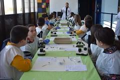 20180505_FeriaCienciaSostenible (2) (Parque Científico UVa) Tags: feria ciencia sostenible colegios niños tecnología talleres campus miguel delibes 2018 valladolid uva universidad