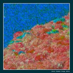 Impressionism at Euroflora (cienne45) Tags: euroflora euroflora2018 flaralies internationalflowershows parksofnervi nervi genova genoa genovanervi fiori flowers carlonatale cienne45 natale exhibition floralie impressionismo impressionism