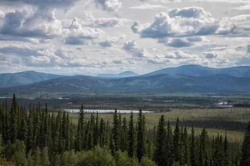 Taiga, tundra, foothills