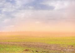 Oklahoma Dust Storm (zendt66) Tags: zendt66 zendt nikon d7200 oklahoma wildfire dust hdr promatix