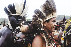 2 (FearlessCollective) Tags: bahia indigenous land rights reclaim protest protect portrait