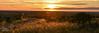 Country road (Matteo Liberati) Tags: tramonto spagna palazuelosdeeresma segovia spain sunset españa castillayleón sun sole sol landscape paesaggio paisaje scenery view gold oro golden dorato dorado field campo campaña campagna campaign grain grano trigo backlight controluce contraluz contrast contraste contrasto plants piante plantas road carretera strada orange arancione naranja cielo sky clouds nuvole nubes colors colores colori colours europa europe puestadesol atardecer