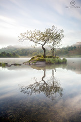 Rydal Water (breddenphoto) Tags: lakedistrict lakes lake landscape cumbria clouds colour canon reflections reflection trees tree thelakesdistrict thelakes thelakedistrict inversion mist