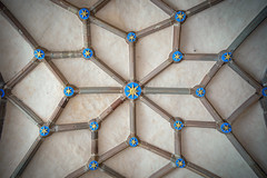 Powis Castle Ceiling (Howie Mudge LRPS BPE1*) Tags: powiscastle welshpool powys wales cymru uk nationaltrust nationalgeographic ngc ceiling pattern art artistic blue stars travel documentary sony sonya7ii sonyilce7m2 sonyalphagang canon1740mmf4l fotodioxfusionproadapter perspective history historical old