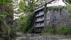 A Spring Evening on Strabane Canal 7 May 2018 v1 Short (aidandevlin) Tags: aspring evening strabane canal river foyle lock gates tide dennett tyrone derry waters salmon fishing campsies devines lough schooners marquess abercorn