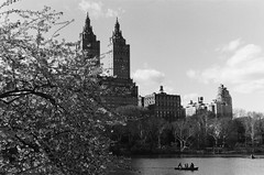 the start of warm weather in New York through a vintage lens (NYC Macroscopist) Tags: spring cherryblossom nyc 50mm film bw vintage blackandwhite centralpark clouds lake analog skyline manhattan