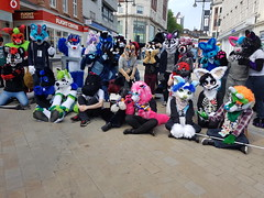 """Leeds furmeet May2018 • <a style=""""font-size:0.8em;"""" href=""""http://www.flickr.com/photos/97271265@N08/41528709054/"""" target=""""_blank"""">View on Flickr</a>"""