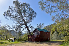 cabin in the woods (drphelps) Tags: lake berryessa gap napa california norcal mountains deer flower bees fog mist trees cabin camping grilling pleasure cove nature spring hiking