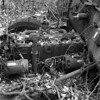 Inline 6 Engine of an Old Plymouth Decaying (pmvarsa) Tags: spring 2018 analog bw blackandwhite film 120 mf 6x6 mediumformat ilford ilfordfp4plus fp4 125iso nikonsupercoolscan9000ed nikon coolscan cans2s mamiya c33 mamiyac33 classic camera tlr twinlensreflex mood rust car chrysler plymouth decay abandoned derelict engine wheels trees leaves inline6 inlinesix inline moss forest woods trail moraine art waterloo ontario canada