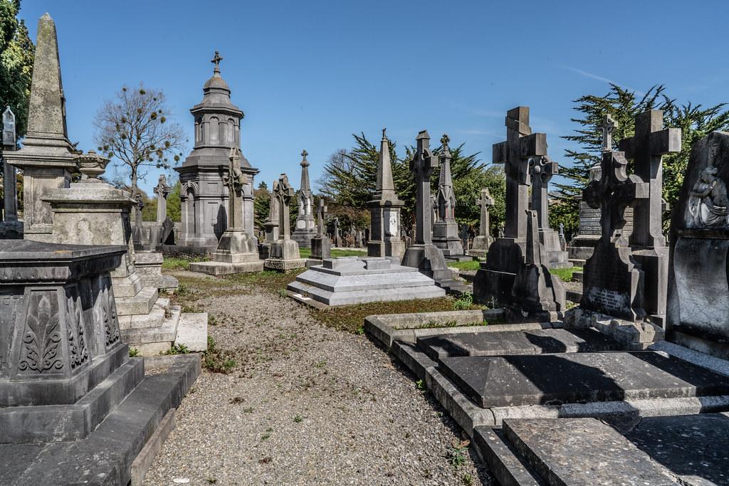JOHN O'DONOVAN AN IRISH SCHOLAR [BURIED IN GLASNEVIN CEMETERY DECEMBER 13 1861]-138852
