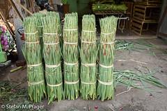 708-Mya-MANDALAY-0872.jpg (stefan m. prager) Tags: asien myanmar markt blume mandalay mandalayregion myanmarbirma mm