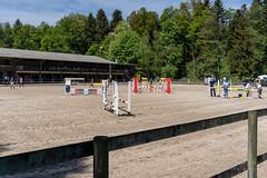 A7302125_s (AndiP66) Tags: vereinsspringen springen sursee 2018 29april2018 april pferd horse schweiz switzerland kantonluzern cantonlucerne concours wettbewerb horsejumping equestrian sports springreiten pferdespringen pferdesport sport sony sonyalpha 7markiii 7iii 7m3 a7iii alpha ilce7m3 sonyzeisstfe35mmf28za zeissfe35mmf28 zeiss fe 35mm f28 sel35f28z andreaspeters