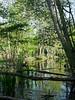 Feuillage et reflêts à Morchêne (Livith Muse) Tags: reflet arbre bois barrière eau étang vert saintcyrenval centre france fra green feuille panasonic lumix g80 tree pond reflection water wood lumixgmacro30f28