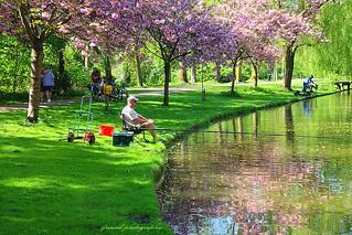 Vrijbroekpark Mechelen, fishing pond