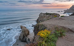 hazy sunset (lucmena) Tags: losangeles ca usa ngc el matador state beach california wildflowers spring sunset colorful outdoor nature ocean water seascape