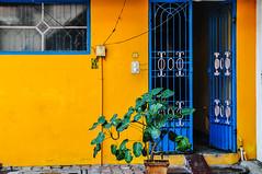 N° 23 (Docaron) Tags: inde india tamilnadu தமிழ்நாடு pondichery puducherry couleurs colors colours orange bleu blue porte door dominiquecaron புதுச்சேரி