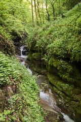 Gorges du Chauderon - Montreux - Suisse (pichmoly.sun) Tags: chauderon gorges montreux vaud suisse
