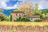 Mas Provençal (Xtian du Gard) Tags: xtiandugard mas provence var cogolin painting vignoble vineyard digiart