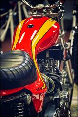Triumph X75 triple (G. Postlethwaite esq.) Tags: canon40d canonefs60mmmacro dof hurricane nationalmotorcyclemuseum triumph x75 beyondbokeh bokeh depthoffield motorcyle naked photoborder primelens selectivefocus triple